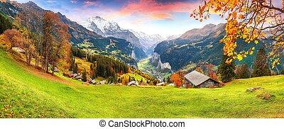 alpin, automne, vallée, wengen, fabuleux, village, lauterbrunnen, vue, pittoresque