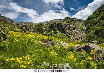 alpin, landschaftsbild