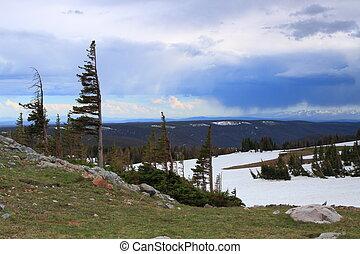 alpin, landskap