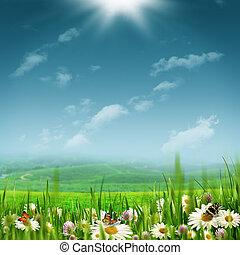 alpin, pastoral, landschaftsbild, mit, schoenheit, gänseblumen, blumen, unter, hell