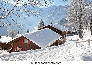alpin, szenerie, braunwald, schweiz
