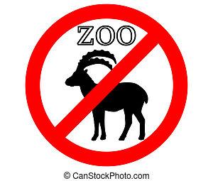 alpin, verboten, steinbock, zoo