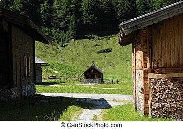 Alpine 020 - A View in an alpine village