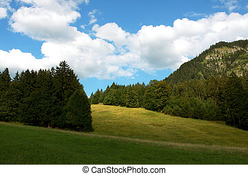 alpine beauty - beautiful alpine landscape with bright blue ...