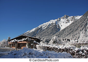 Alpine cabin - Traditional alpine cabin in the mountains of...