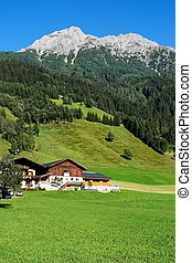 Alpine chalet and meadows under the mountains