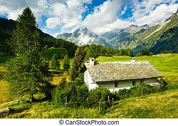 Alpine hut on vivid meadow in Switzerland