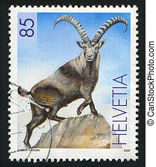 Alpine Ibex - SWITZERLAND - CIRCA 2006: stamp printed by...