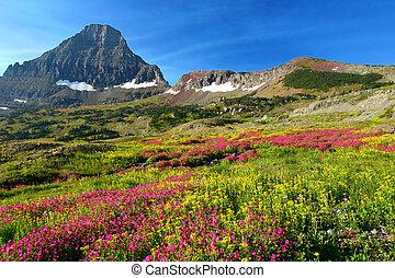 alpine kaszáló