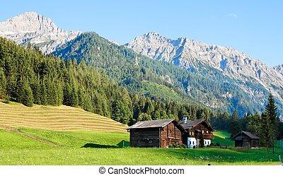 Alpine landscape in Austria