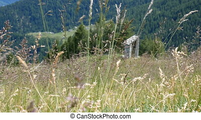 Alpine landscape in summer in Valtellina