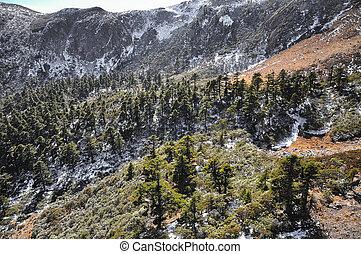 Alpine landscape in sunny autumn day