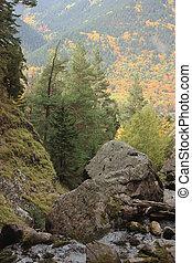 Alpine landscape with a river