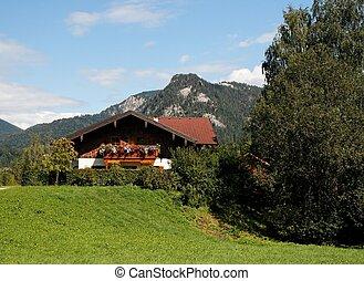 Alpine landscape with chalet in Austria
