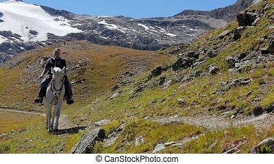 alpine landscape with horseman 4k