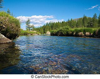 Alpine landscape with river flowing