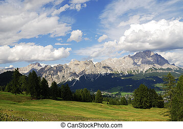 Alpine Meadow - Alpine meadow in the dolomites (Italy)