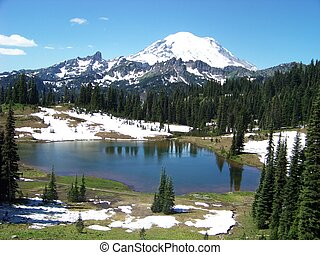 An alpine meadow, Tipsoo Lake, and Mt. Rainier at Mt. Rainier National Park