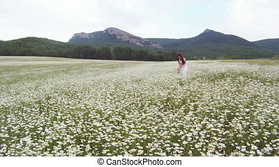 Alpine meadow covered with daisies and a woman enjoying its...