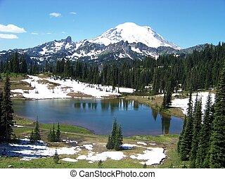 Alpine Meadow - An alpine meadow, Tipsoo Lake, and Mt....