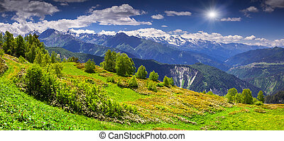 Alpine meadows in the Caucasus mountains