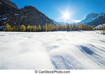 Alpine mountain landscape on a sunny day with larch trees in the snow. Snow fall early winter and late autumn.