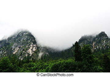 Alpine mountains in the fog on a summer cloudy day. Bovaria, Germany