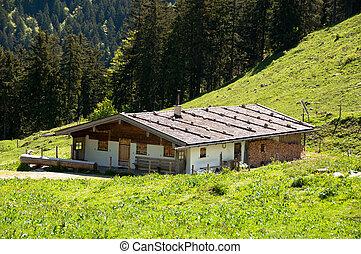 Alpine Pasture - Alpine pasture with mountains, trees, a hut...