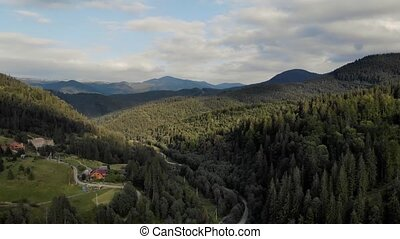 Alpine peaks landscape background. Green forests in the Carpathian mountains under cloudy sky. Beauty of Ukrainian nature.