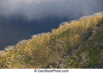 Alpine Ridgeline #1 - Mt Hotham, Victorian Alps. Victoria,...