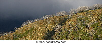 Alpine Ridgeline #2