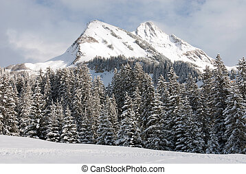 Alpine scene, near the village of Warth-Schrocken, in Austria