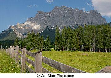 Alpine scene with a gate in foreground