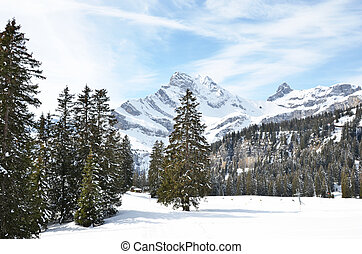 Alpine scenery, Braunwald, Switzerland
