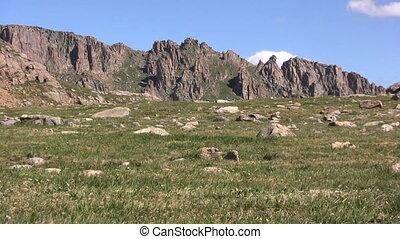 Alpine Scenic Landscape