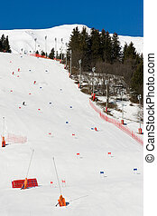 Alpine skiing piste
