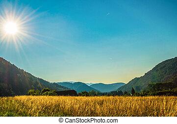 Alpine summer landscape with copy space.
