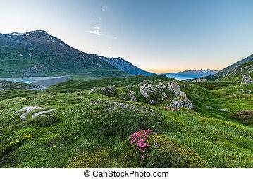 Alpine twilight - High altitude alpine landscape at dawn ...
