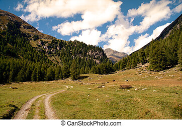 Alpine valley seen from a trail. Hiking in Swiss Alps