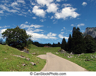 Alpine View