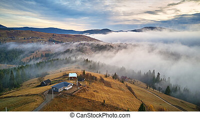November morning. Morning fog in mountain valley. Forest covered by low clouds. Misty fall woodland