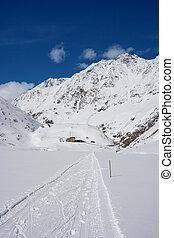 Alpine Winter Landscape, Austria