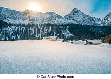 Alpine winter on a sunny day