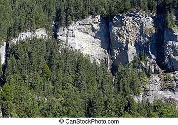 alpino, montañas, detalle