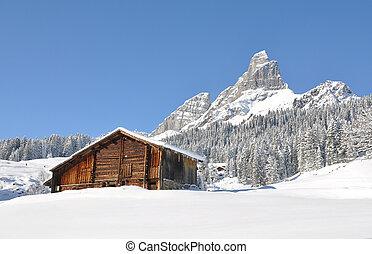alpino, scenario
