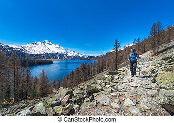 alpino, viajando arduamente, en, el, alpes suizos, un, niña, excursionismo, con, un, grande, lago, en, el, plano de fondo