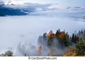 alpok, közben, ősz, köd