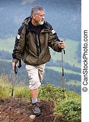 alps), 山, (swiss, ハイキング, 高く, 活動的な 先輩