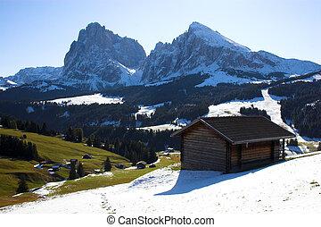 Alps and log house