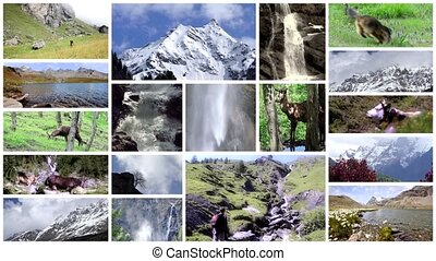 Alps collage. High mountains